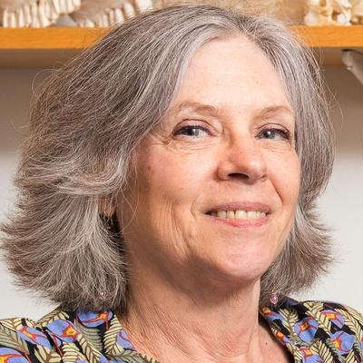 Margaret S. Livingstone